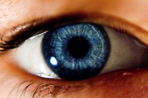 Simple eye scan opens window to multiple sclerosis