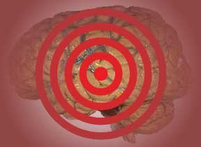 Impulsiveness Linked To Brain's Reward Center