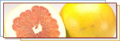 Grapefruit compound may help combat hepatitis C