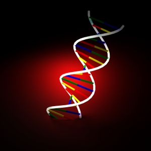 Genetic variant linked to biological aging