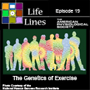Genetic Basis of Exercise