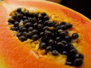 Papaya extract against cancer
