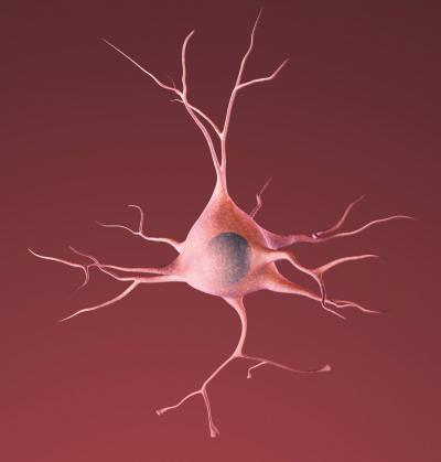 Potential way to protect neurons