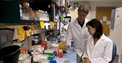UMMS scientists identify new genetic mutation that causes familial ALS