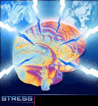 The association with stress and depression