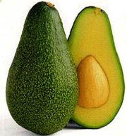 Avocados May Help Prevent Oral Cancer