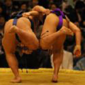 Deadly rugby virus spreads in sumo wrestlers