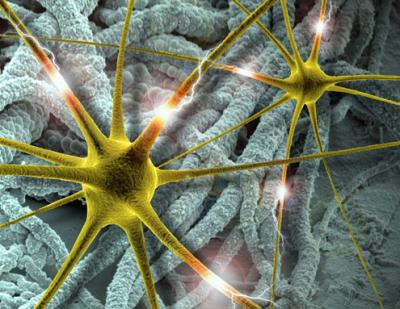 A step forward: Brain implants using polymer nanotubes