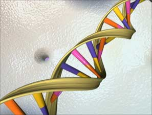 DNA repair mystery solved