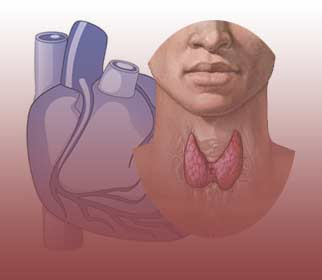 Thyroid Function and Heart Failure